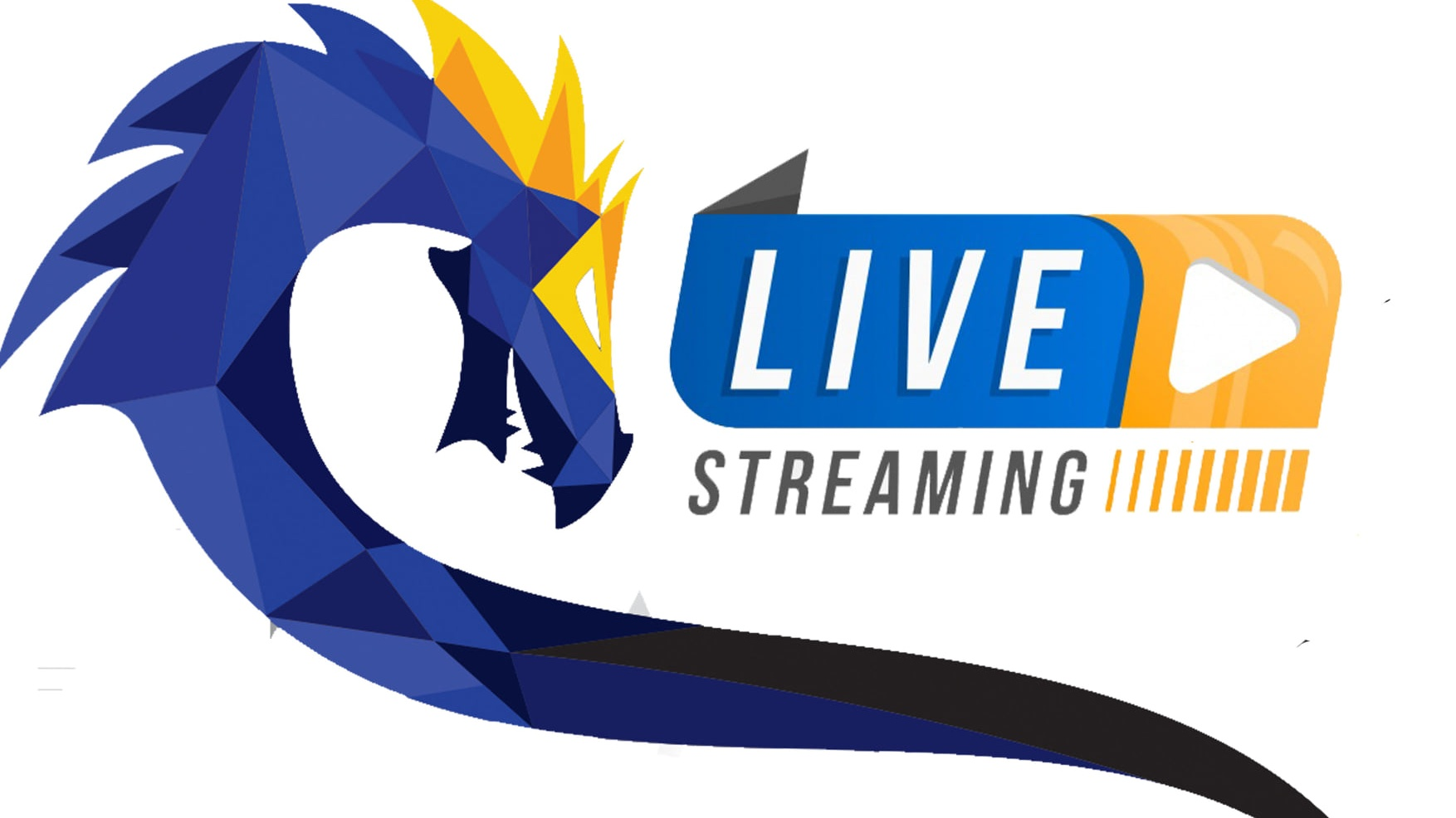 Euros 2019 - Live streaming thumbnail